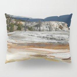 Grassy Spring View Pillow Sham