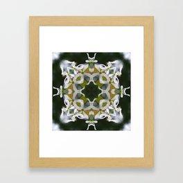 Lacy Serviceberry Mandala - Amelanchier blossoms 0033 k1 Framed Art Print