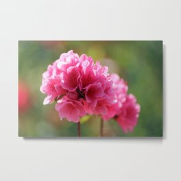 Pink Is The Color Metal Print