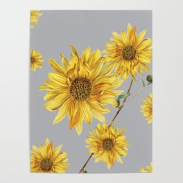 Sunflower Pattern 5 Poster