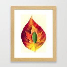 Stackable Leaves II Framed Art Print