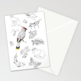 Animals of North America  Stationery Cards