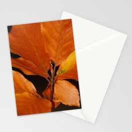 Ards Autumnal Colors Donegal Stationery Cards