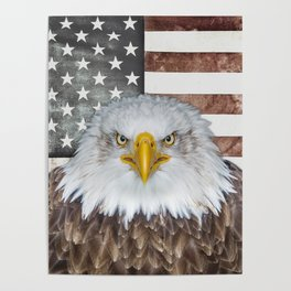 American Bald Eagle Patriot Poster