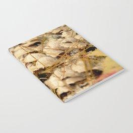 2015-10-23 - 0009 Notebook