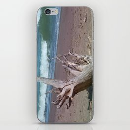 All That Is Left iPhone Skin