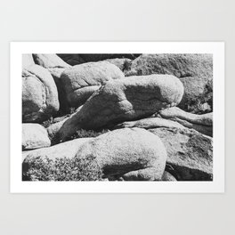 Big Rock 7444 Joshua Tree Art Print