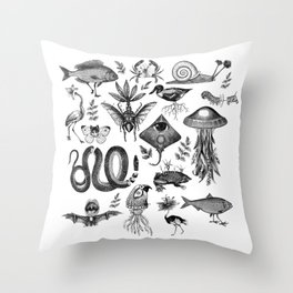 Curiosity Cabinet Collection Throw Pillow