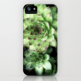 Green Chickens 3 iPhone Case