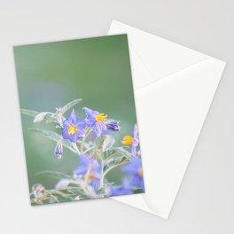 Silver-Leaf Nightshade Stationery Cards