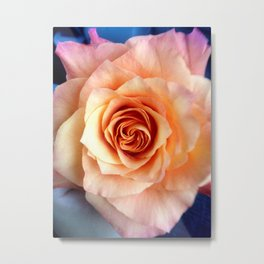 A Rose for Rosie Metal Print