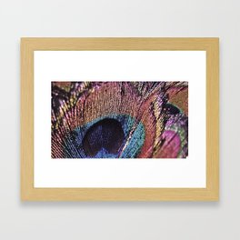 Magenta Peacock Framed Art Print