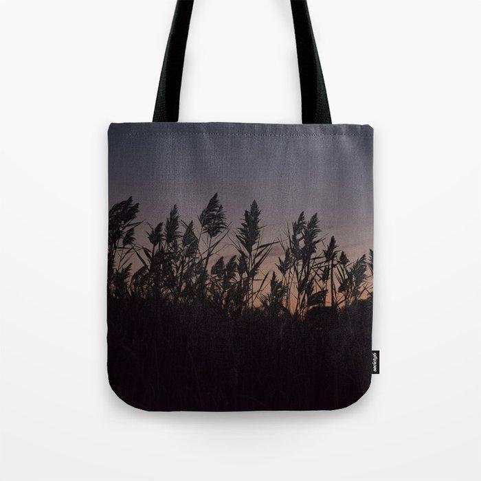 Phragmites silhouette at sunset Tote Bag