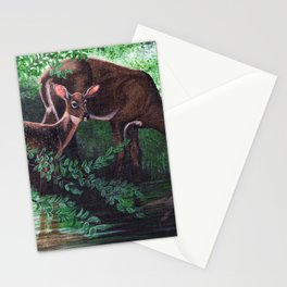 Peacefulness at the Stream  Stationery Cards
