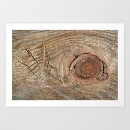 Wood with knot Art Print