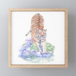 Tiger Oasis Framed Mini Art Print