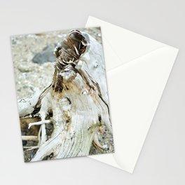 Deer Isle Series: Sea Stump Stationery Cards