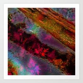 Reflection of Fall Art Print