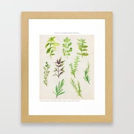 Watercolor Herbs Framed Art Print