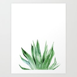Agave. Tropical Leaves. Art Print