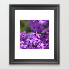 A Beautiful Day Framed Art Print