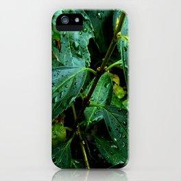 Greenery and leaf I iPhone Case