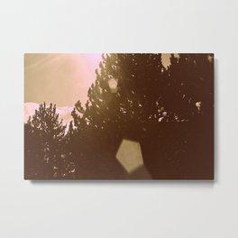 Pentagonal Flare Metal Print