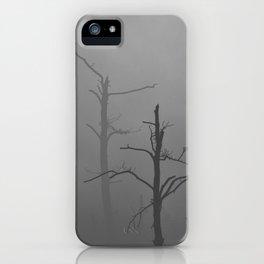 340 | bastrop state park iPhone Case