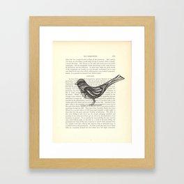 Perched Framed Art Print