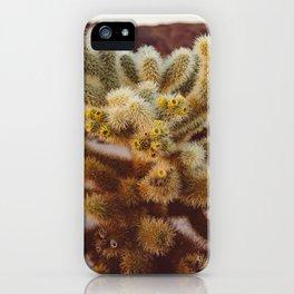 Cholla Cactus Garden XIV iPhone Case