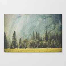 Yosemite Valley IV Canvas Print