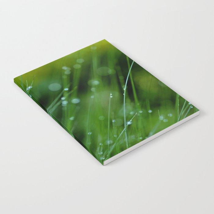 Dreamland Notebook