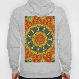 Kaleidoscopic Orange Garden Gazanias Hoody