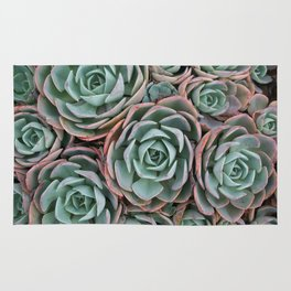 Pink & Green Succulent Garden Rug