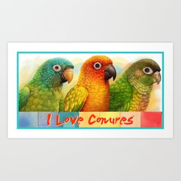 Sun blue-crowned green-cheeked conures realistic painting Art Print
