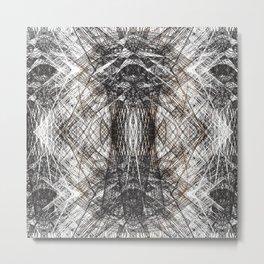 31618 Metal Print