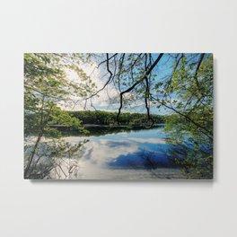 Pond Views Metal Print