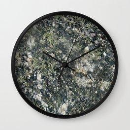 Mossenger Microcosms Wall Clock