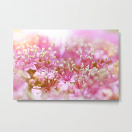 Pretty Pink Flowers Near the Beach  #decor #society6 #buyart Metal Print