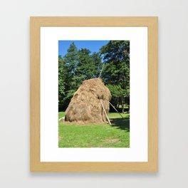 romania medieval haystack animal food traditional barn Framed Art Print