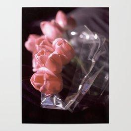 Malibu tulips Poster