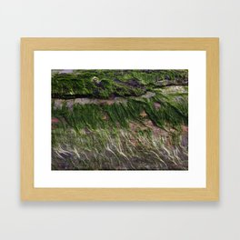 ocean wood Framed Art Print