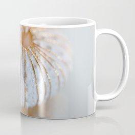 Sea Urchin Shell Coffee Mug