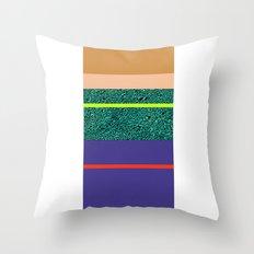 80 States  Throw Pillow
