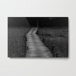 Into the Dark Metal Print