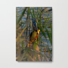 BLUE HERON'S FRIDAY SUNDOWN FISH FEAST Metal Print