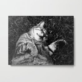 Dreaming of jamón Metal Print