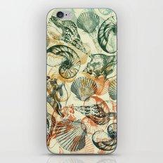 frutti di mare iPhone & iPod Skin