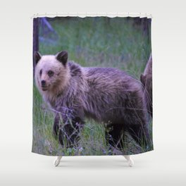 Grizzly bear cub in Jasper National Park | Alberta Shower Curtain