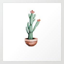 Cactus 01 Art Print